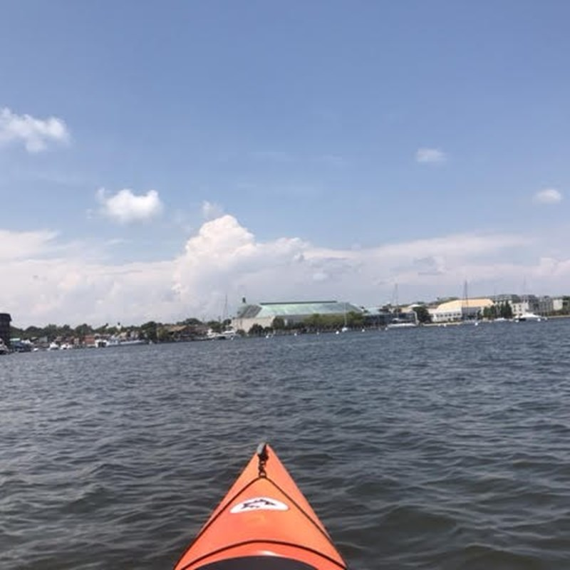 I love hitting the Bay for a good paddle! There's just something about being that close to the Bay. Being just inches from the water for hours, and sometimes miles out, you get a real sense of just how vital this national treasure really is!