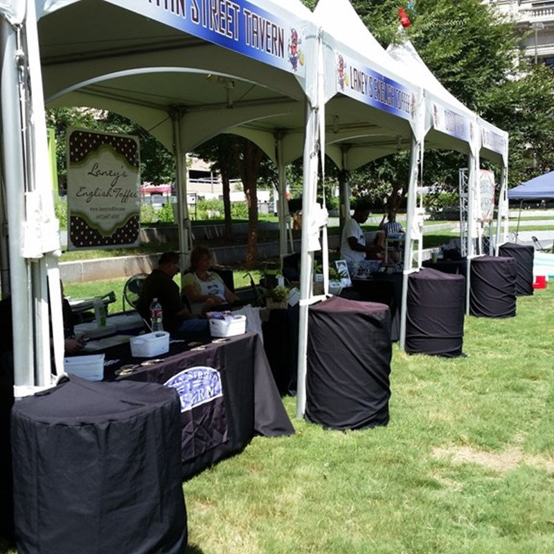 Before the festivities started...commercial vendors on Main Street side of the park — at 2nd Annual Summer SausageFest.
