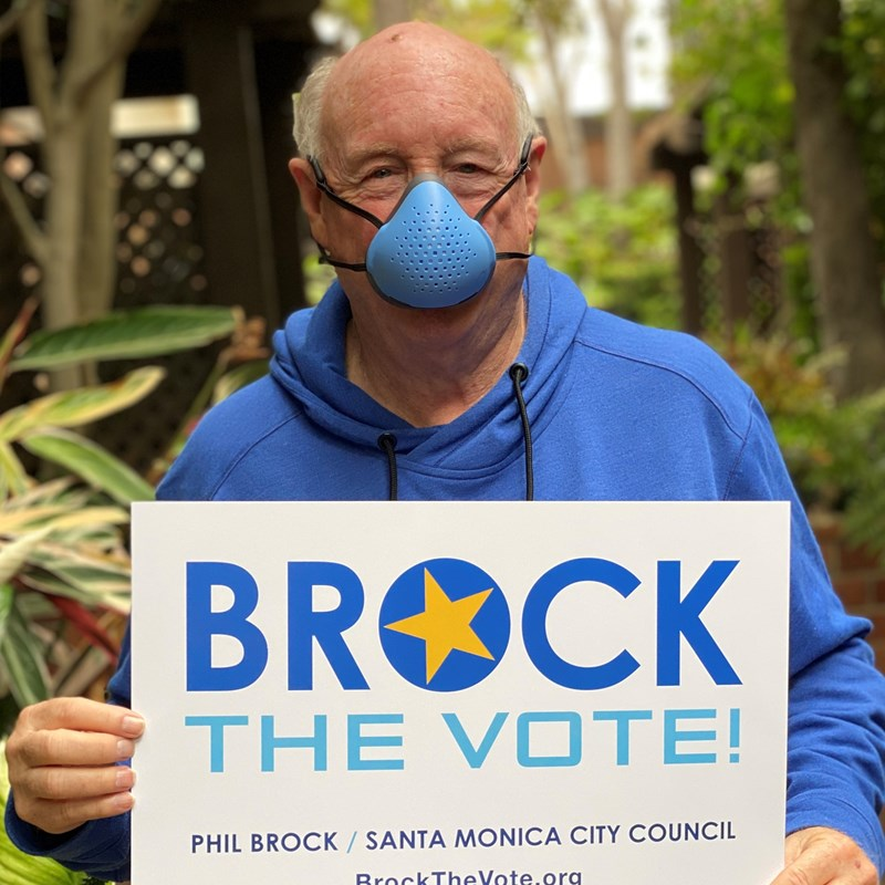 During this pandemic it's wise to wear a mask, care about your fellow humans, and Brock The Vote!