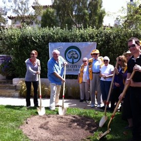 Planting trees on Arbor Day. The Recreation & Parks Commission, Urban Forest Task Force and the Lions Club participated in this planting to add much needed canopy to our urban forest. We need more trees in our city!