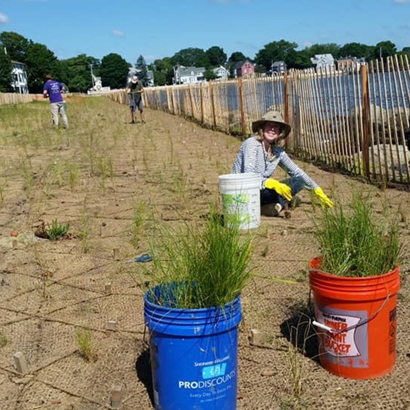 """Planting the """"Living Shoreline"""" at Collins Cove with Salem Sound Coastwatch for Coastal Resiliency! June - July"""