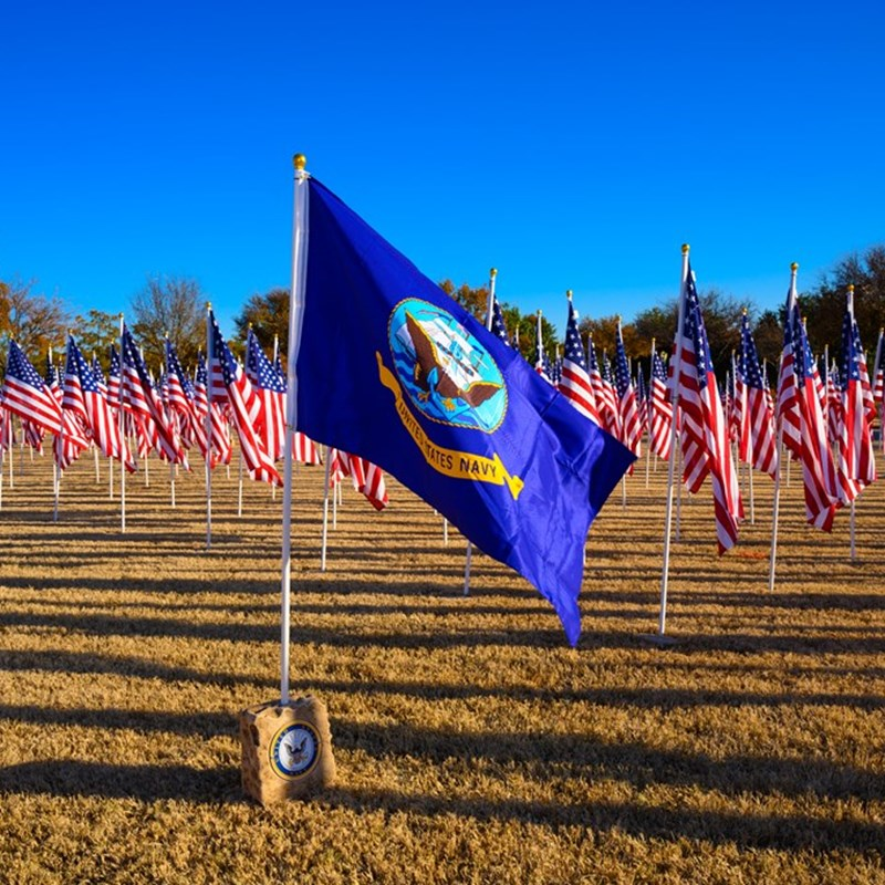 Field of Flags at the Keller Town Hall