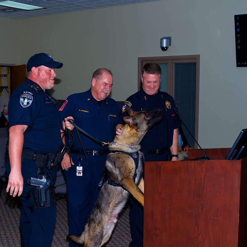 Introduction of Indy our Canine Police Officer.